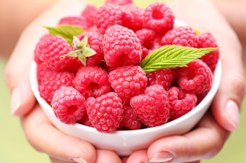 Raspberry ketone in Slimtone Plus