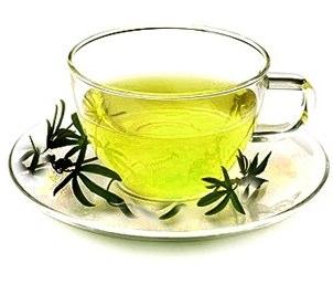 Green Tea fat burning