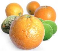 Fruit for low GI