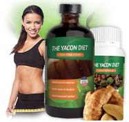 where to buy the yacon diet